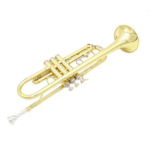 Tromba Bb B Flat Brass Exquisite con bocchino di pulizia Brush Cloth Guanti Strap