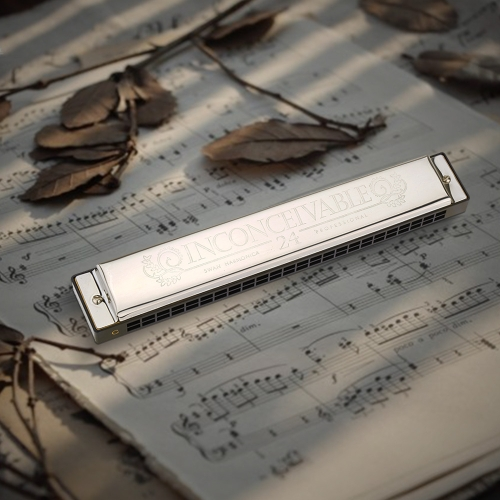 Swan Tremolo Harmonica Performance Harmonica 24 Holes 48 Tones C Key with Black Box