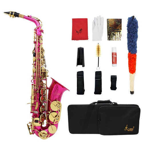 LADE Brass Engraved Eb E-Flat Alto Saxophone Sax Abalone Shell Buttons Wind Instrument with Case Gloves Cleaning Cloth Grease Belt Brush