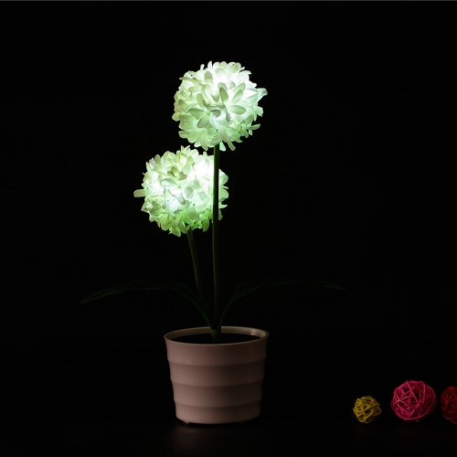 2 LEDs Solar Powered Allium Giganteum Flower LED Light Night