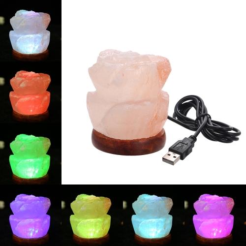 Natürliche Himalaya-Salz LED-Licht Luftreiniger Reiniger Lampe mit USB-Ladeanschluss