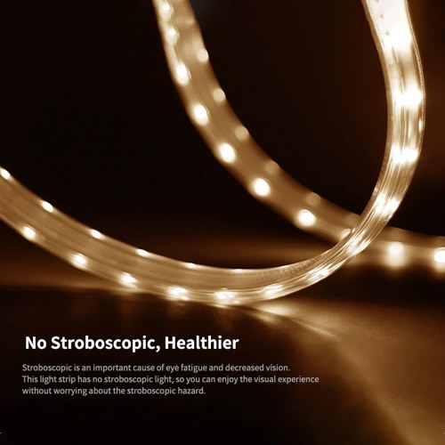 Lixada 220-240V 5m/16.4ft LEDs Light Strips Dimmable Flexible Rope Light Kit  for Home Lighting Kitchen Bedside Cabinet