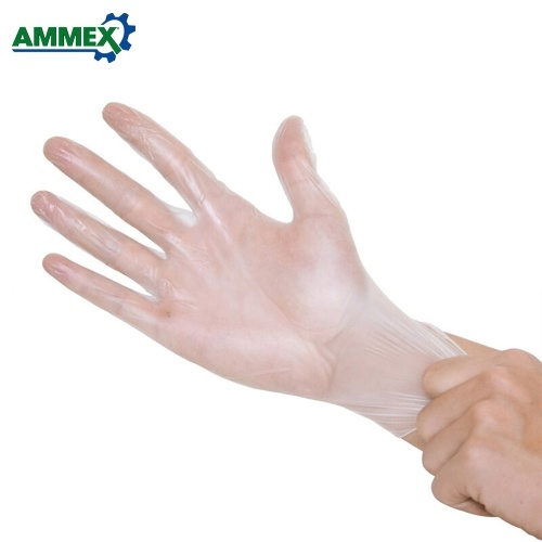AMMEX 100pcs Eco-Friendly Transparent Disposable Glove Hygiene Gloves