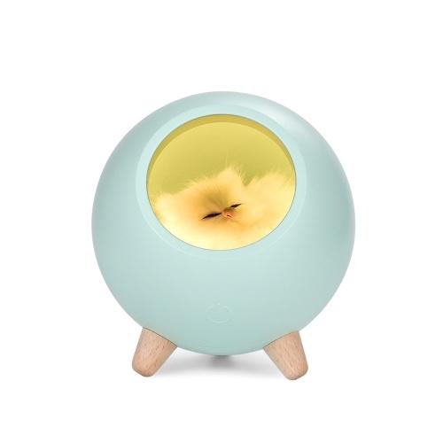 Mini Pet House Night Light Abajur portátil USB dimerizável Crianças Bebé Quarto Decoração Light