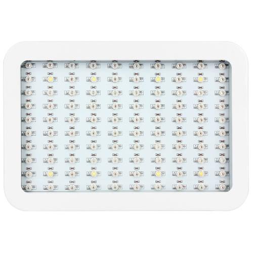 LED crescere la luce