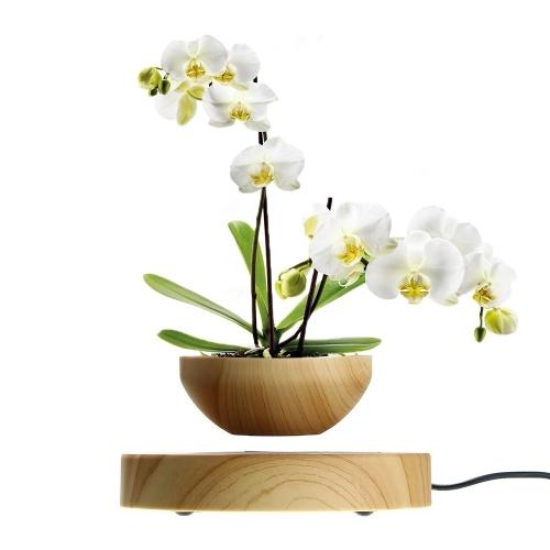 Vaso per bonsai ad aria con vaso da fiori a levitazione magnetica