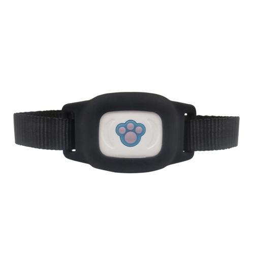 Colar de seguimento de GPS do perseguidor do animal de estimação FP03 para cães e monitor da atividade do animal de estimação dos gatos