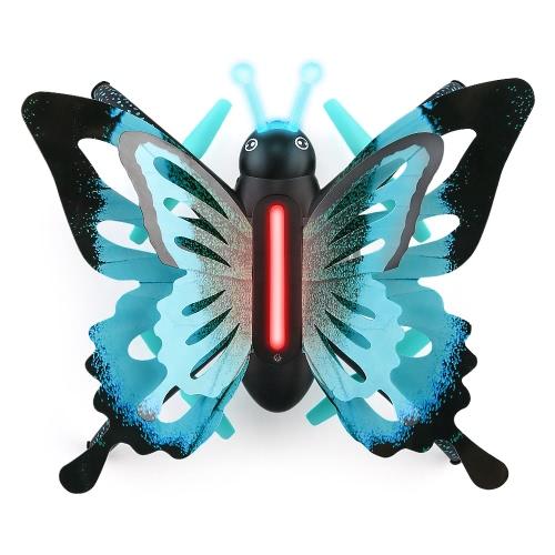 JJR / C H42 Motyl Motyl