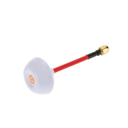 Circulaire 5.8GHz Polarized RX / TX 4 Leaf Clover Mushroom antenne SMA pour QAV250 ZMR250 RC Quadcopter