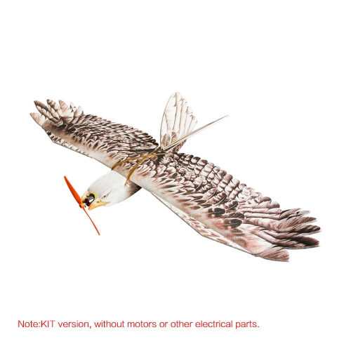 DW HOBBY Biomimetic Eagle EPP Mini Slow Flyer 1200mm Wingspan RC Airplane KIT