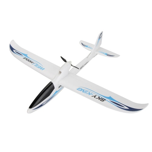 Wltoys F959 SKY-King 2.4G 3CH Radio Control RC Airplane Aircraft RTF Version