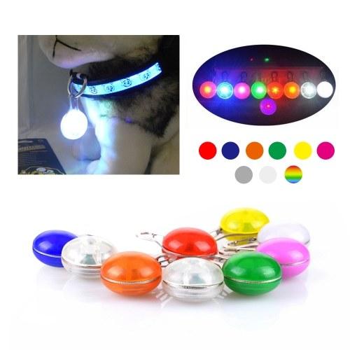 Красочный клип ночной свет безопасности / Pet брелок