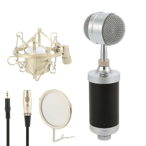 Y-3000 Professional Condenser Microphone Studio Sound Recording Broadcasting with Shock Mount  3.5mm Audio Cable Mini Pop Filter