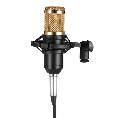 BM800 Microphone à condensateur