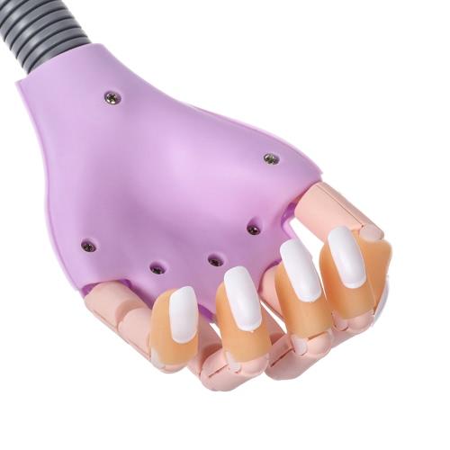 Nail Trainer DIY Nail Art Model Hand Tool con 100 puntas de uñas