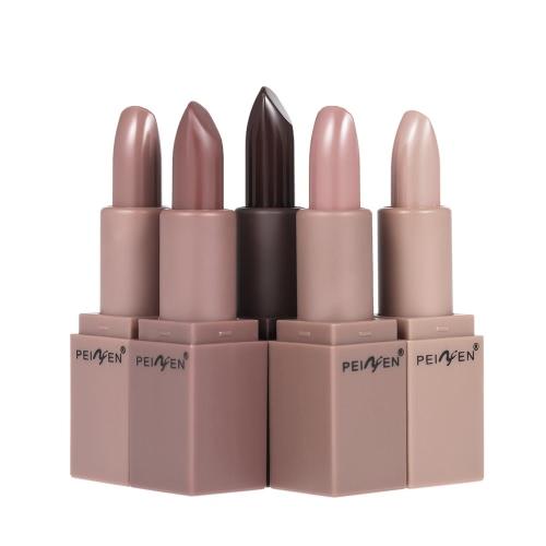 PNF 5Pcs / Set Matte Lip Stick Hidratante Lip Rouge Gloss Lápis De Lápis De Lápis Cor De Abóbora Long-lasitng Impermeável Lip Pigment