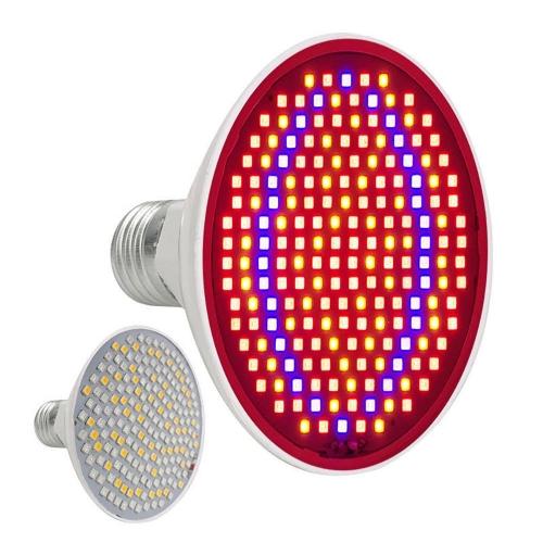 Luz LED Fotón Rejuvenecimiento de la piel Terapia Cara Masajeador Lámpara eléctrica Facial Anti acné Eliminación de arrugas Salón de belleza Cara Cuidado del cuerpo