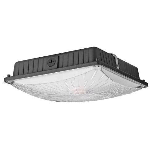 65W 8125LM imperméabilisent les appareils d'éclairage de plafond d'auvent de LED