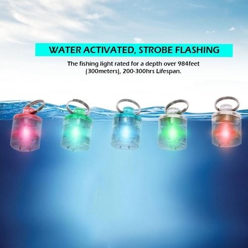 5PCS LED Fishing Light Deep Drop Underwater Round Shape Squid Strobe Flashing Light Bait Lure Image