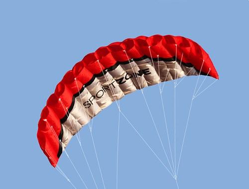 Sport all'aria aperta 2,5 m Power Kite morbida linea doppia Stunt Parafoil Kite con maniglia 30m linea
