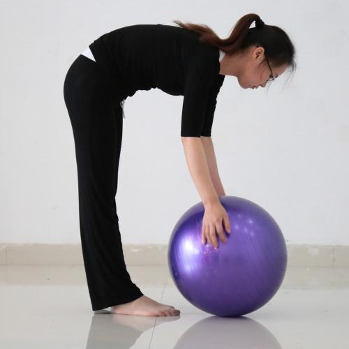 75 cm フィットネス運動ジム フィット ヨガ コア ボール多目的屋内フィットネス トレーニング ヨガ ボール
