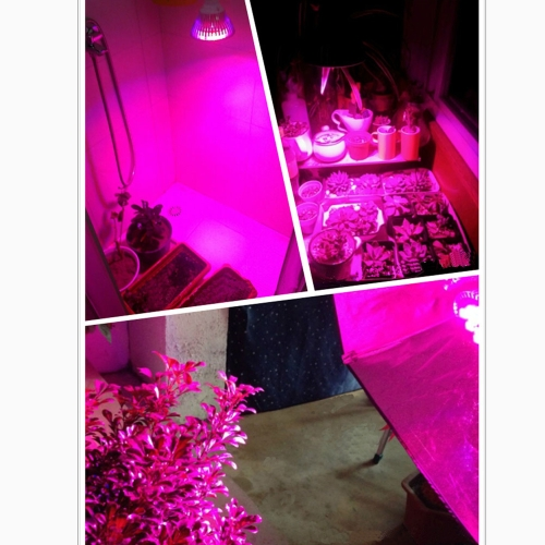 E27 15W LED Plant Grow Light Hydroponic Lamp Bulb 12 Red 3 Blue Energy Saving for Indoor Flower Plants Growth Vegetable Greenhouse 85-265V
