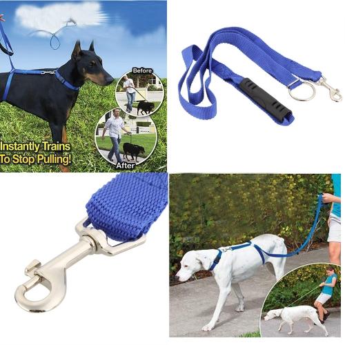 Hund Leine sofort Trainer für Hunde Pet Seil zu Fuß Training 30lbs 6ft