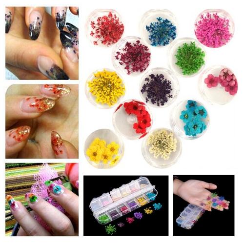 12 цветов реальных ногтей сушеные цветы ногтей украшения советы DIY с случае маленькие цветки. фото