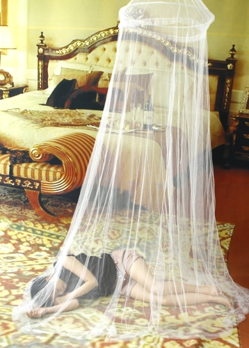 Elegant Netting Bed Canopy Mosquito Net White Sales Online White